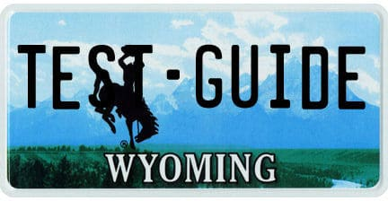 wy plate