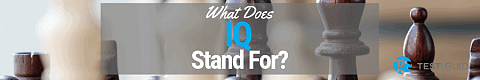 what does IQ stand for